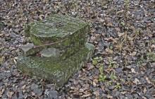 Kisszekeres izraelita temető