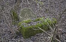 Izraelita temetők: Császló