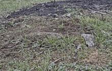 Szamosbecs izraelita temető