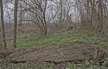 Fényeslitke izraelita temető