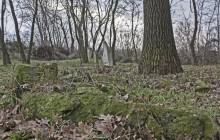 Lövőpetri izraelita temető