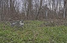Szabolcsbaka 2 zsidótemető