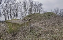 Szabolcsbaka 1 izraelita temető