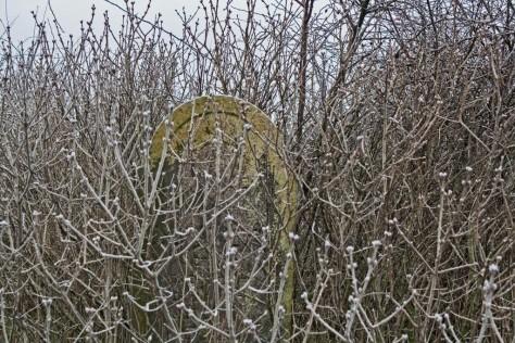 Tiszasüly izraelita temető