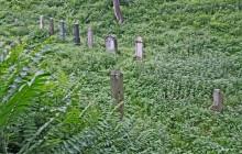 Dömös izraelita temető