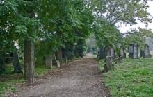 Cegléd izraelita temető