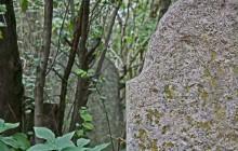 Tápióbicske izraelita temető