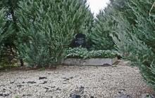 Izraelita temetők: Törtel