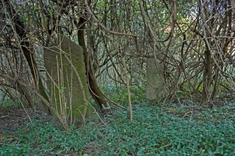 Izraelita temetők: Csetény