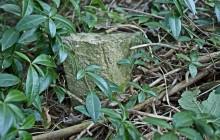 Csetény izraelita temető