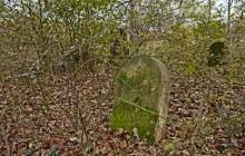 Izraelita temetők: Lesenceistvánd