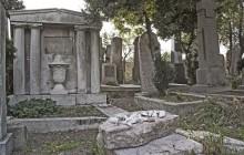 Ercsi izraelita temető