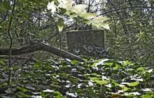 Izraelita temetők: Mezőkomárom