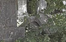 Izraelita temetők: Sárbogárd