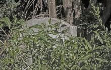 Sárbogárd izraelita temető