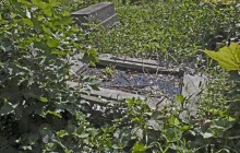 Izraelita temetők: Sárosd