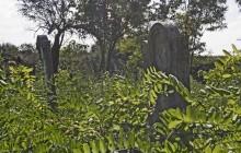 Sárosd izraelita temető