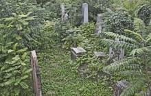 Izraelita temetők: Székesfehérvár