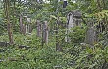 Székesfehérvár izraelita temető