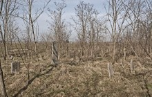 Izraelita temetők: Darvas