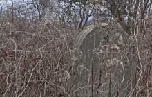 Felsőjózsa izraelita temető
