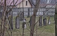 Izraelita temetők: Hajdúhadház