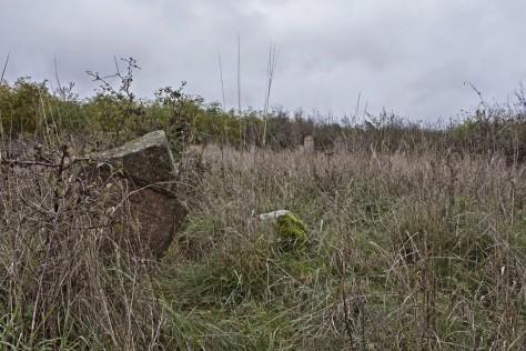 Baktakék izraelita temető
