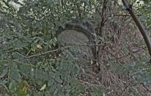 Izraelita temetők: Borsodgeszt