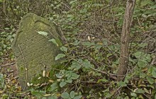 Izraelita temetők: Vadna