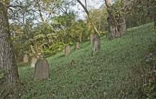 Izraelita temetők: Dubicsány