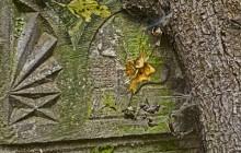 Telkibánya izraelita temető