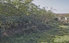 Emőd izraelita temető