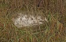 Szendrőlád izraelita temető