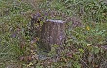 Izraelita temetők: Gelej