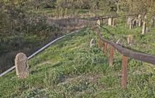 Izraelita temetők: Göncruszka