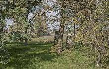 Hejőkeresztúr izraelita temető