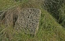Izraelita temetők: Hejőszalonta
