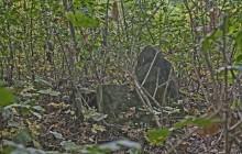 Izraelita temetők: Hernádszurdok