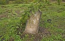 Izraelita temetők: Nemesbikk 1