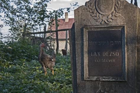 Izraelita temetők: Járdánháza