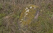 Négyes izraelita temető