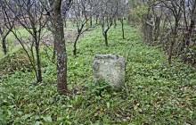 Kissikátor izraelita temető