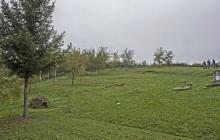 Krasznokvajda izraelita temető
