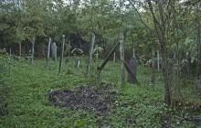 Lénárddaróc izraelita temető