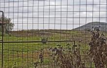 Legyesbénye izraelita temető